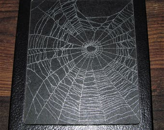 Real framed preserved spider web orb weaver 6in x 5in R2