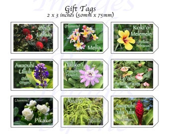 Flowers of Hawai'i, GIFT TAGS (2 x 3 inches)