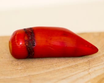 Ancient Deep Red Coral Bead With Hole