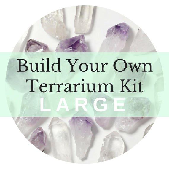 Large Custom Terrarium Kit || Build Your Own Air Plant + Crystal DIY Kit