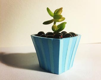 Decorative indoor Succulent Plant in mini heart planter cute gift
