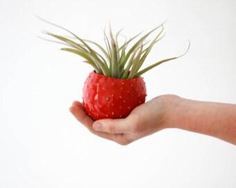 Small handmade ceramic spiky succulent planter/ red flower pot/ planter for flowers/ air planter/ planter cover/ spiky planter/