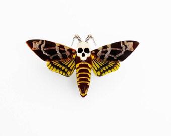 Death's head hawk moth brooch