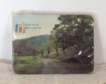 1970's Hot Pad or Wall Plaque w/ cork backing, Country Scene, in cellophane