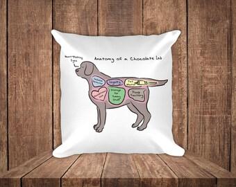 Anatomy of a Chocolate Lab - Funny Labrador Retriever Square Pillow