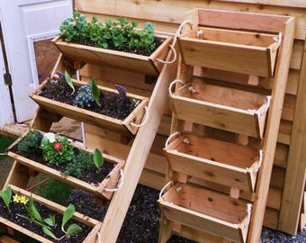 """Ends Thursday New 24"""" vertical gardenings walled kit raised elevated planters plant living wall indoor planter cedar wooden herb box"""