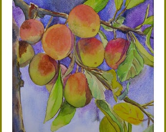 Watercolor - plum tree branch
