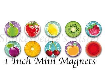 Fruit Magnets - Colorful Art - Refrigerator Magnets - 1 Inch Mini Magnets - Set of 10 - Kitchen Decor