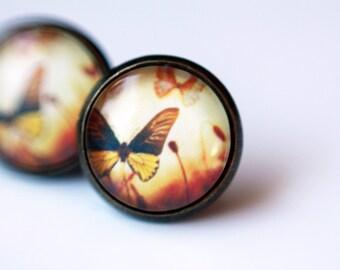 12 mm Stud Earrings, butterfly, Brown