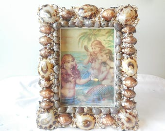 Seashell Picture Frame-Beach Frame-Coastal Decor-Seashells-Shell Frame-Nautical Decor
