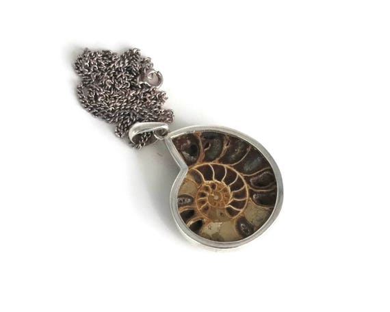 Fossilized nautilus shell pendant in sterling silver setting on sterling silver curb link chain, various brown colors, 21 grams, circa 1970s