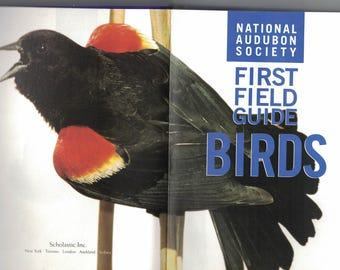 1998 National Audubon Society First Field Guide: Birds Paperback ~~ FREE SHIPPING in the USA!
