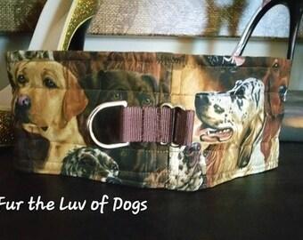 "Sweetness Collar, Choker, ""Hunt Club""  Sweetness Dog Collar Kindness Choke Collar"