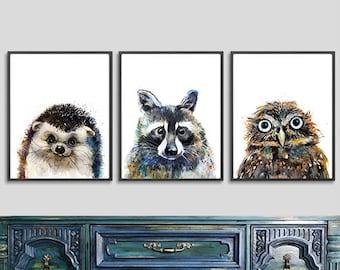 Woodland animal print watercolor painting animals, woodland nursery wall art, owl print, hedgehog print, racoon print, set of 3 prints - S21