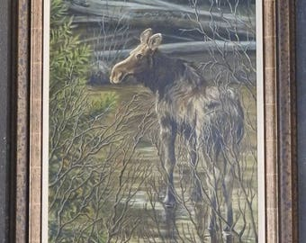 Who's watching, Original Oil Painting of calf moose.