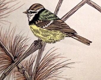 """Vintage """"Bird Watcher's Dream"""" Silk Scarf with Amazing Detail"""