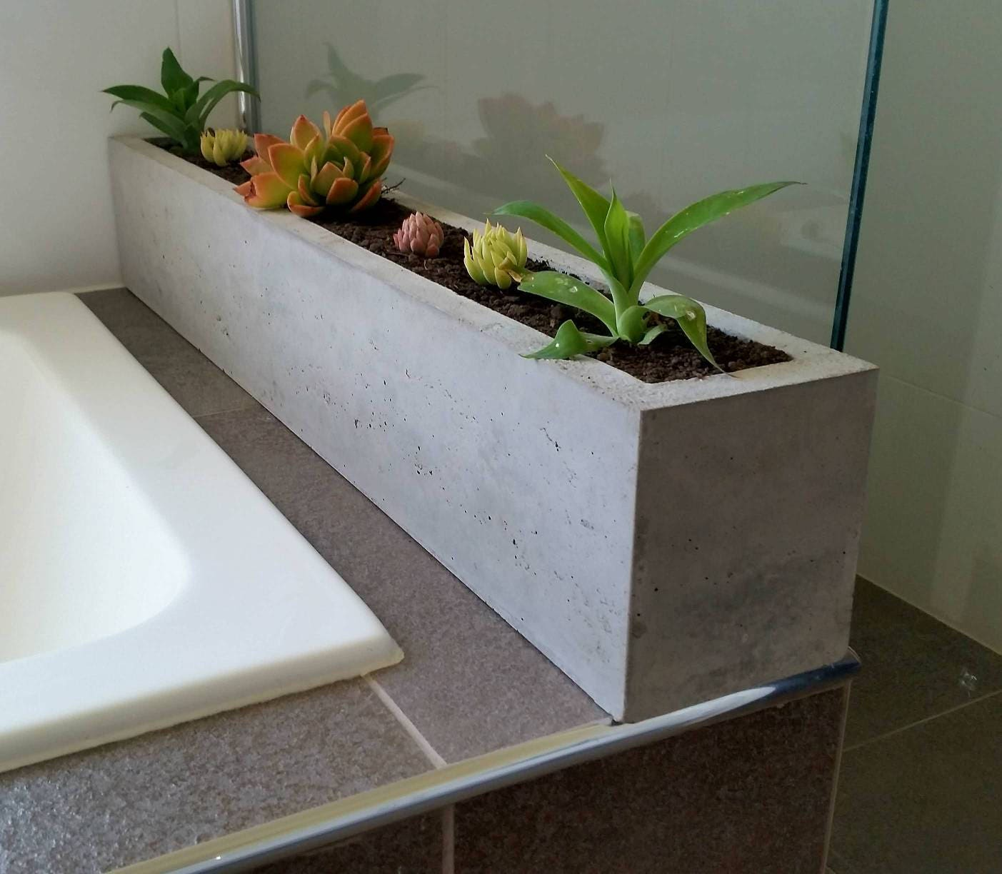 High Stone Wall Garden With Rectangular French Marble: Polished Concrete Planter Large Rectangular 900mm Succulent