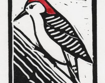Red Bellied Woodpecker, Linocut print with watercolor added,signed.
