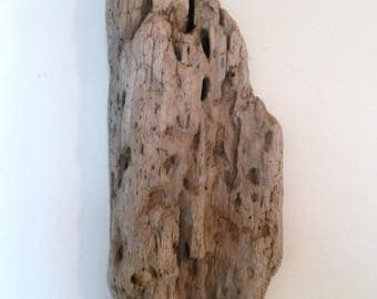Driftwood wall decor nature