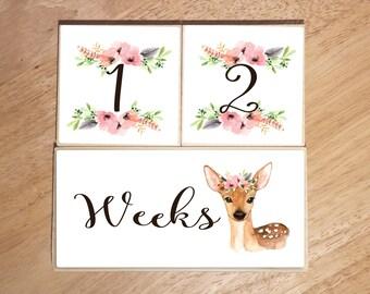 WOODLAND Blocks, Baby Girl, Milestone Blocks, Age Blocks, Baby Milestone, Baby Photo Props, Monthly Baby Blocks, Baby Gift, Nursery Decor