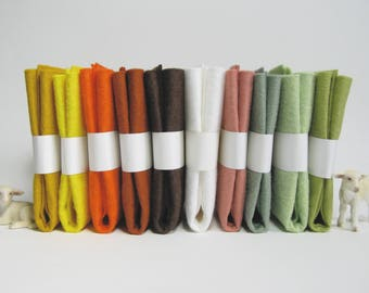 "10 Piece Variety Pack of Wool Blend Felt Sheets 22.8cm x 30.4cm (9"" x 12"")"
