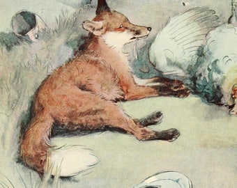 "Cecil Aldin Dog Print ""White Ear and Peter"" (1912) No:13 of 15"