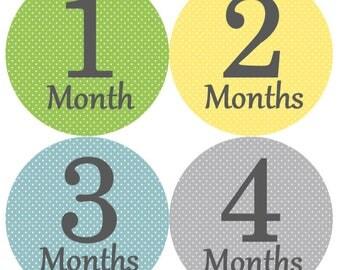 Baby Milestone Stickers Boy, Milestone Stickers, Month to Month Stickers Boy, Girl #26
