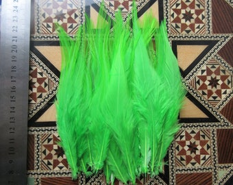 10-16cm 40pcs Apple green rooster feathers