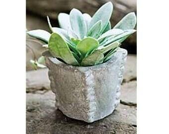 Fairy Garden  - Ruffled Edge Pot - Miniature