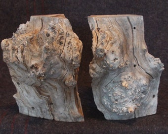 2 Box Elder Burl Chunks Live-Edge Wood Rustic Reclaimed Natural Table Decor 3D Sculpture Gaia-Art Bookshelf Display Woodworking Blank
