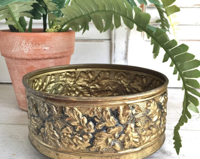 Brass Planter with Embossed Acorn Design