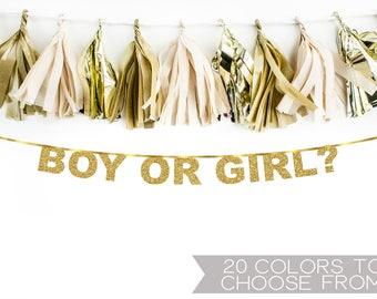 Boy or Girl banner, Gender Reveal banner, Baby Shower banner, Gold Glitter Party Decorations