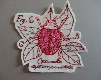 Applied on felt patch figure insect ladybugs