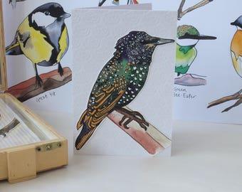 "Hand Made Card / Illustrated Greeting Card/ Bird Card / Hand Made Greeting Card ""Starling"""
