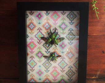 Green Stag Beetle // Framed Insects // Bohemian Decor // Beetle Pair // Beetle Display