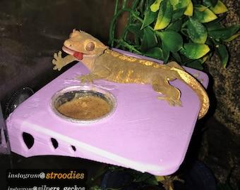 Premium Crested Gecko Feeding Ledge