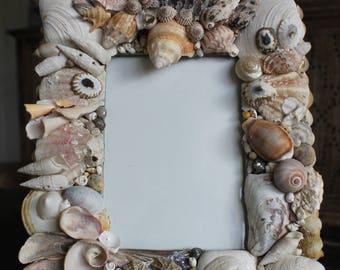 Handmade Shell Frame - Large