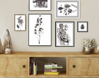 Gallery Wall, Set Of 6 Botanical Prints, Black And White Art, Living Room