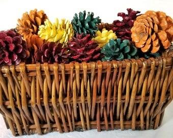24 Fall Pine Cones, Thanksgiving Pine Cones, Autumn Pine Cones, Red Pine Cones, Green Pine Cones, Yellow Pine Cones, Orange Pine Cones