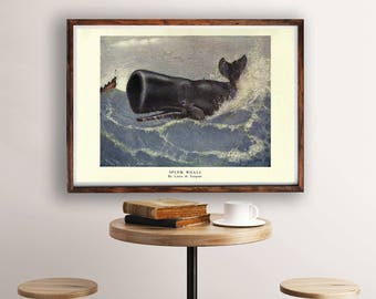 Whale Vintage Art, Whale Print, Whale Illustration, Whale Poster, Ocean Art, Nautical Wall Art, Coastal Wall Art, Vintage Zoological Print