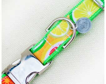 Summer Citris Dog Collar