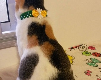 Bow Green Elastic Cat Collar