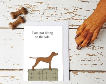 Not sat on the Sofa. Greetings Card for Dog and Vizsla lovers Blank inside A6