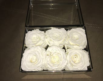 Preserved Roses in glass box