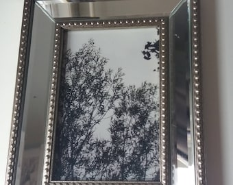 Black & White Trees on Cloudy day with mirror frame