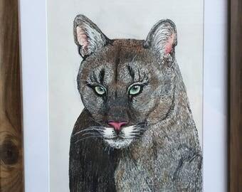 Hand-drawn Mixed Media Puma Cat