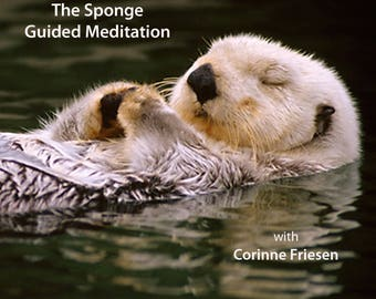 The Sponge - Guided Meditation with Corinne Friesen