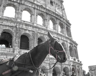 print photography, rome, italy, colosseum, architecture, ancient, coliseum, roman, ruins, landmark, arena, italian, gladiator, horse, 8x10