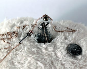 beetle dome - overdosedreality - calgary taxidermy macabre oddities - curio