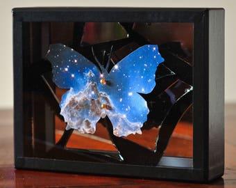 Cosmic Entomology - butterfly box